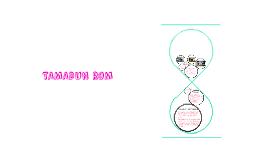 Copy of TAMADUN ROM