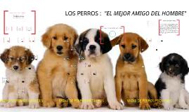 """Copy of LOS PERROS :  """"EL MEJOR AMIGO DEL HOMBRE"""""""