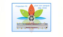 Copy of Projecten Pit: plan van aanpak Stip 2018