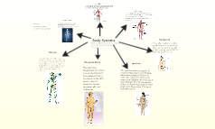Copy of Systems of the Body (1)