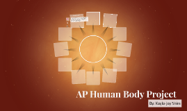 AP Human Body Project