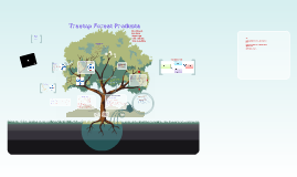Copy of Tree top