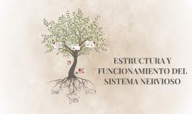 ESTRUCTURA Y FUNCIONAMIENTO DEL SISTEMA NERVIOSO