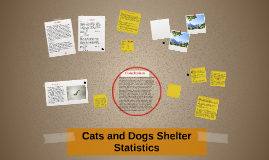 Cats and Dogs Shelter Statistics