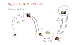 Signe the fluff of Kimstad
