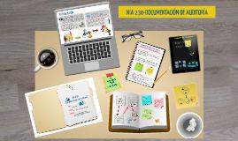 NIA 230 - Documentación de Ausitoría