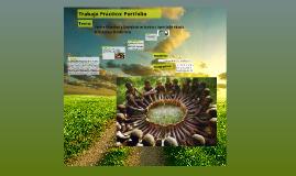 Copy of Tp: Portfolio