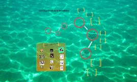 Copy of La investigación aplicada al Diseño Gráfico