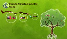 Strange Animals around the World