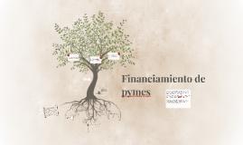 Financiamiento de pymes