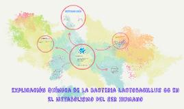Copy of Explicación Química De La Bacteria Lactobacillus GG En El Me