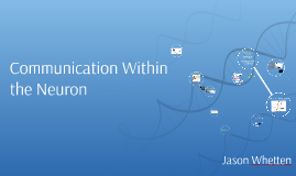 Communication Within