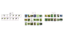 Plant Taxonomy Final