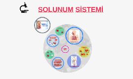 Copy of SOLUNUM SİSTEMİ