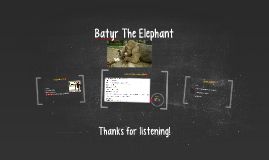 Batyr The Elephant