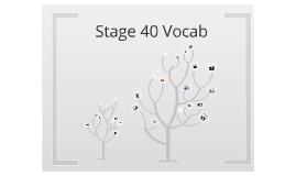 Stage 40 Vocab