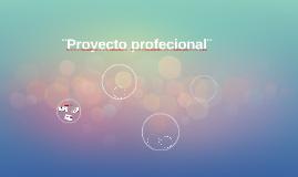 Proyecto profecional