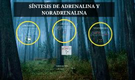 SÍNTESIS DE ADRENALINA Y NORADRENALINA