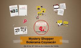Copy of Mystery Shopper