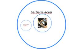 barberia acep