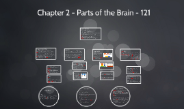 Chapter 2 - Parts of the Brain - 121