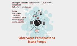 Observação participativa
