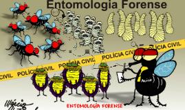¿Qué es la Entomoligía Forense?