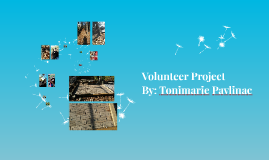 Volunteer Project