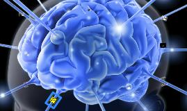 AlphaGenesis