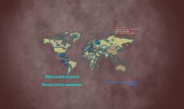 Bildung International