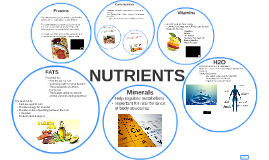 Copy of NUTRIENTS
