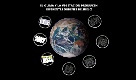 El clima y la vegetación producen diferentes órdenes de suelos