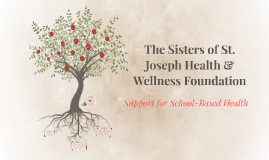 History of SSJWHF Support of School-Based Health