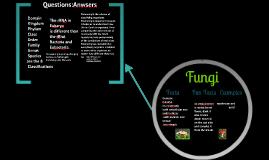 The Six Kingdoms Of Taxonomy