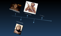 early human timeline