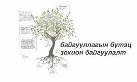 Copy of байгууллагын бүтэц зохион байгуулалт
