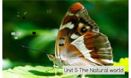 Unit 5 The Natural world