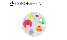 Copy of Gonorrhea