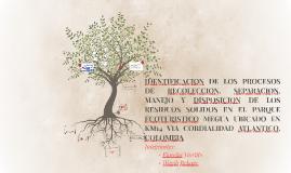 Proyecto de Grado Fiorella y Wagib