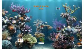Sponges in the Deep Ocean