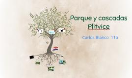 Parque y cascadas Plitvice