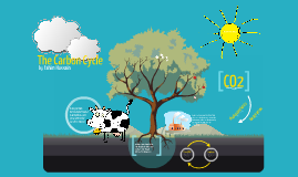 Copy of Copy of The Carbon Cycle