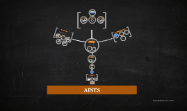 Copy of AINES