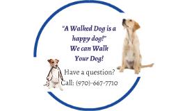 Need a Walk?
