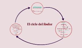 El cicle del fòsfor