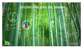 Sustentabilidad del bambú