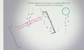 SECTOR FORESTO INDUSTRIAL DEL DEPARTAMENTO DE TUNUYÁN, PROVI