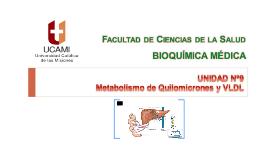 Metabolismo de Quilomicrones y VLDL