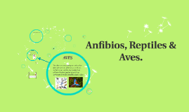 Anfibios, Reptiles y Aves.