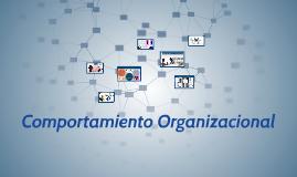 Comportamiento Organizacion